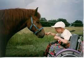 A child with disability undergoing equine therapy