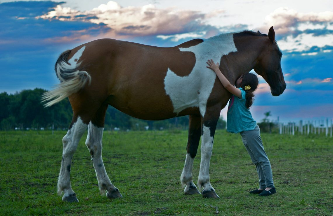 horse-therapy-child.jpg