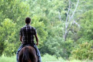 Equine Therapy for Wounded Soldiers