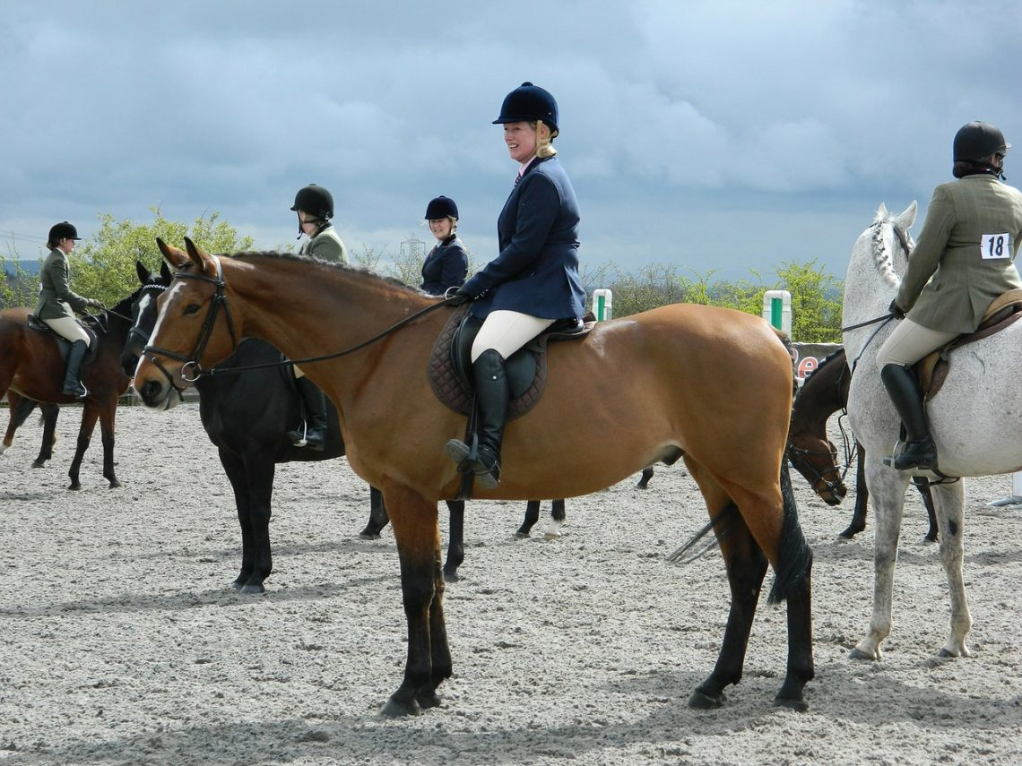 Horse Therapy And Troubled Teenagers Equestrian Therapy