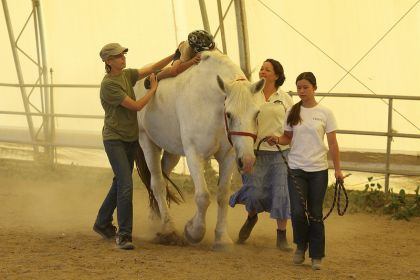 cerebral-palsy-horse-therapy.jpg